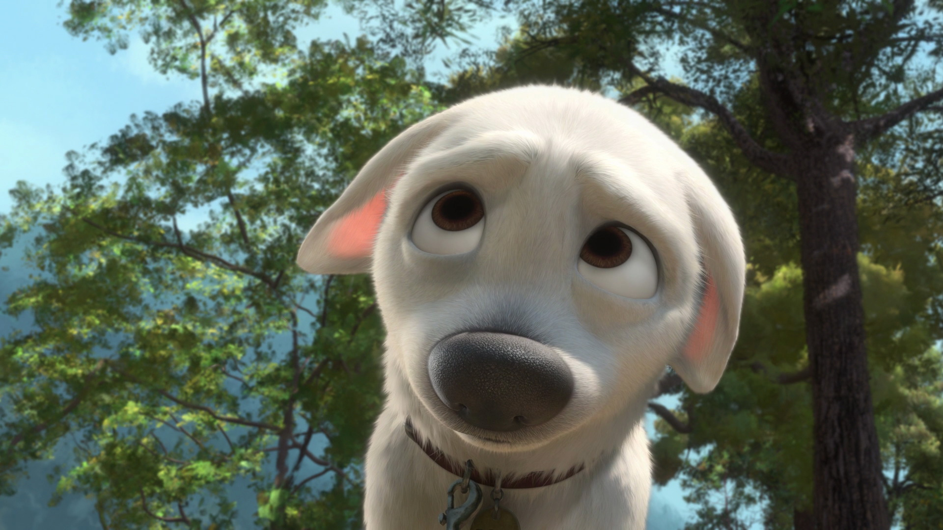 bolt-disneyscreencaps.com-4781